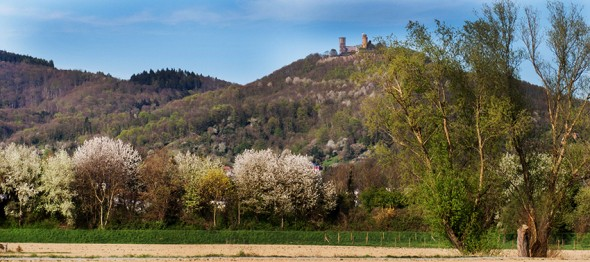 04_15_Schloss_Auerbach_02_up